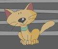 Котик в микроволновке